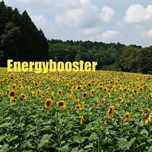 Energybooster