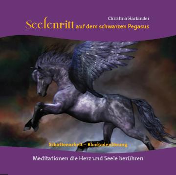 Seelenritt auf dem schwarzen Pegasus