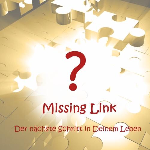 Missing Link - Der nächste Schritt in Deinem Leben