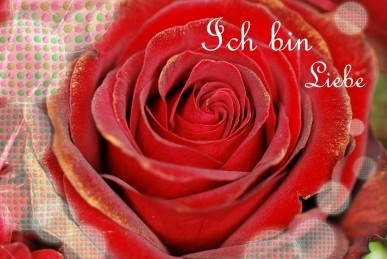 "Postkarte ""Ich bin Liebe"""